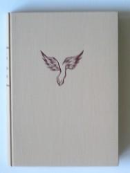 Alice Curchod - Les pieds de l'Ange