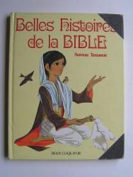 Belles histoires de la Bible. Nouveau testament